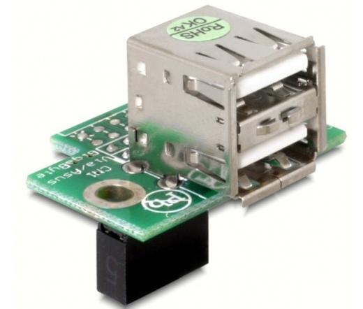 Delock USB Pinheader female > 2x USB2.0 female hor