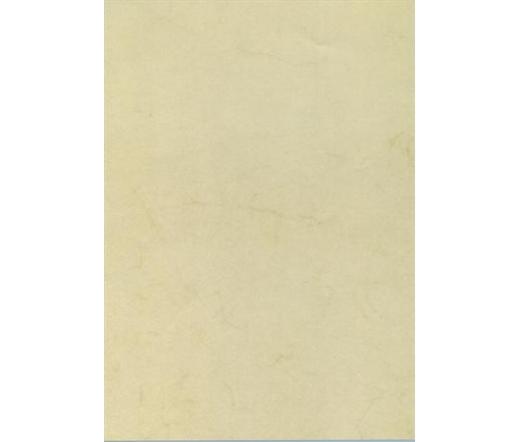 Apli Előnyomott papír, A4, 200 g, havanna 10lap