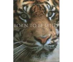 Born to be wild könyv